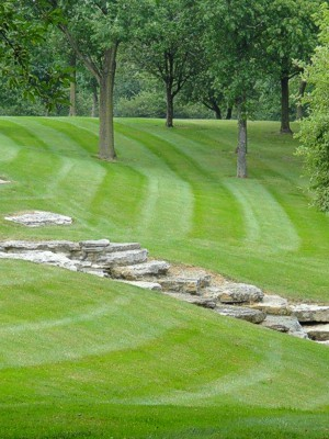 Central Ohio Lawncare and Mowing, Columbus Professional ...